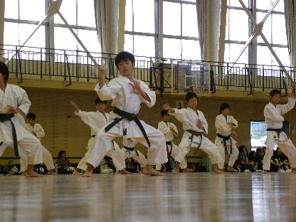 karatedo2014.jpg